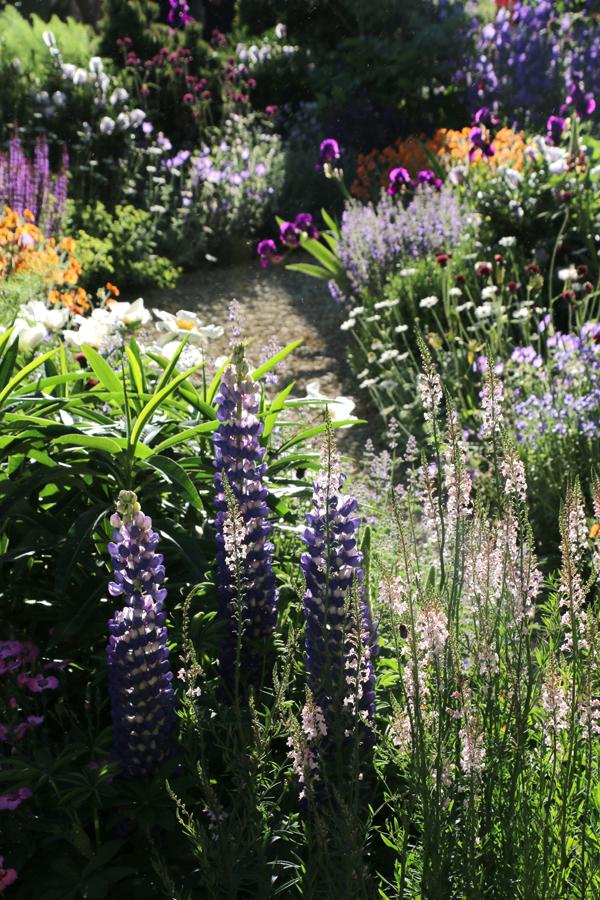Chelsea Flower Show - Chris Beardshaw